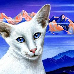 Пазл онлайн: Балинезийская кошка