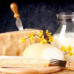 Пазл онлайн: Молочные продукты