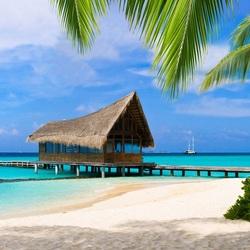 Пазл онлайн: Пирс в тропиках