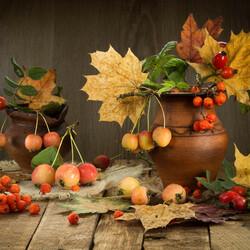 Пазл онлайн: Осенний микс