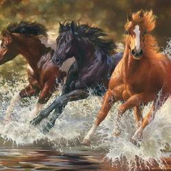 Пазл онлайн: Лошади бегущие по воде