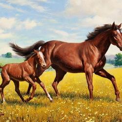 Пазл онлайн: Лошадь с жеребенком