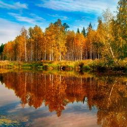 Пазл онлайн: Пеленают душу краски сентября