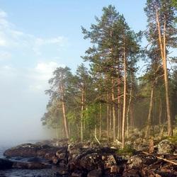 Пазл онлайн: Туман над водой