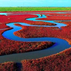 Пазл онлайн: Красный пляж