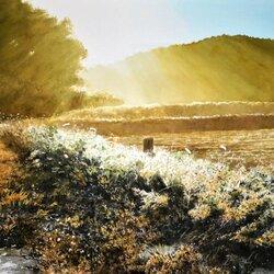 Пазл онлайн: Солнечный день