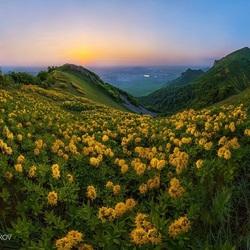 Пазл онлайн: Цветущие горы на закате