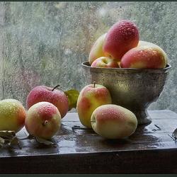 Пазл онлайн: Яблоки под осенним дождем