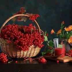 Пазл онлайн: Калина красная