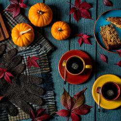 Пазл онлайн: Осенний уют