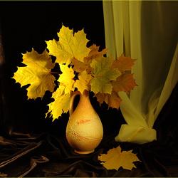 Пазл онлайн: Осенний цвет