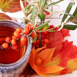 Пазл онлайн: Облепиховый чай