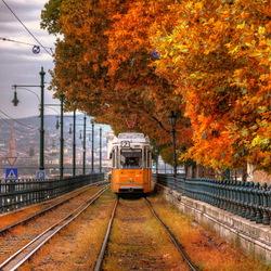 Пазл онлайн: Трамвай в осень