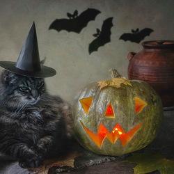 Пазл онлайн: Котохэллоуин
