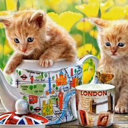 Пазл онлайн: Котята и бабочки