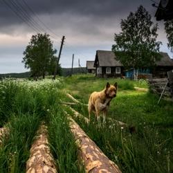 Пазл онлайн: Русский Север