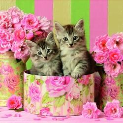 Пазл онлайн: Котята и розы