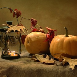 Пазл онлайн: Осенние плоды
