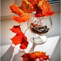 Пазл онлайн: Листья в бокале