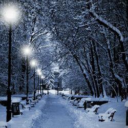 Пазл онлайн: Зимняя аллея