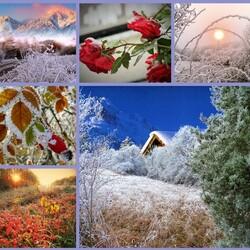 Пазл онлайн: Украшения зимы