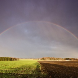 Пазл онлайн: Радуга над полем