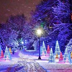 Пазл онлайн: В новогоднем парке
