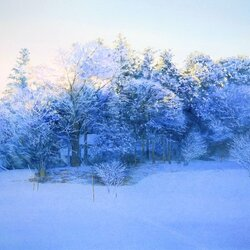 Пазл онлайн: Снег кругом