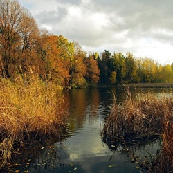 Пазл онлайн: Осень на озере