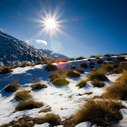Пазл онлайн: Яркое солнце