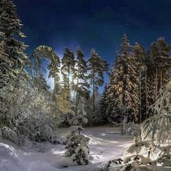 Пазл онлайн: Рождественская ночь