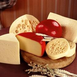 Пазл онлайн: Сырная фантазия