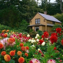 Пазл онлайн: Домик в цветах