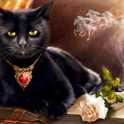 Пазл онлайн: Черный кот