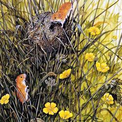 Пазл онлайн: Мышиное гнездовье