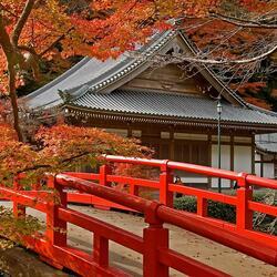 Пазл онлайн: Прекрасный храм осенью в Японии