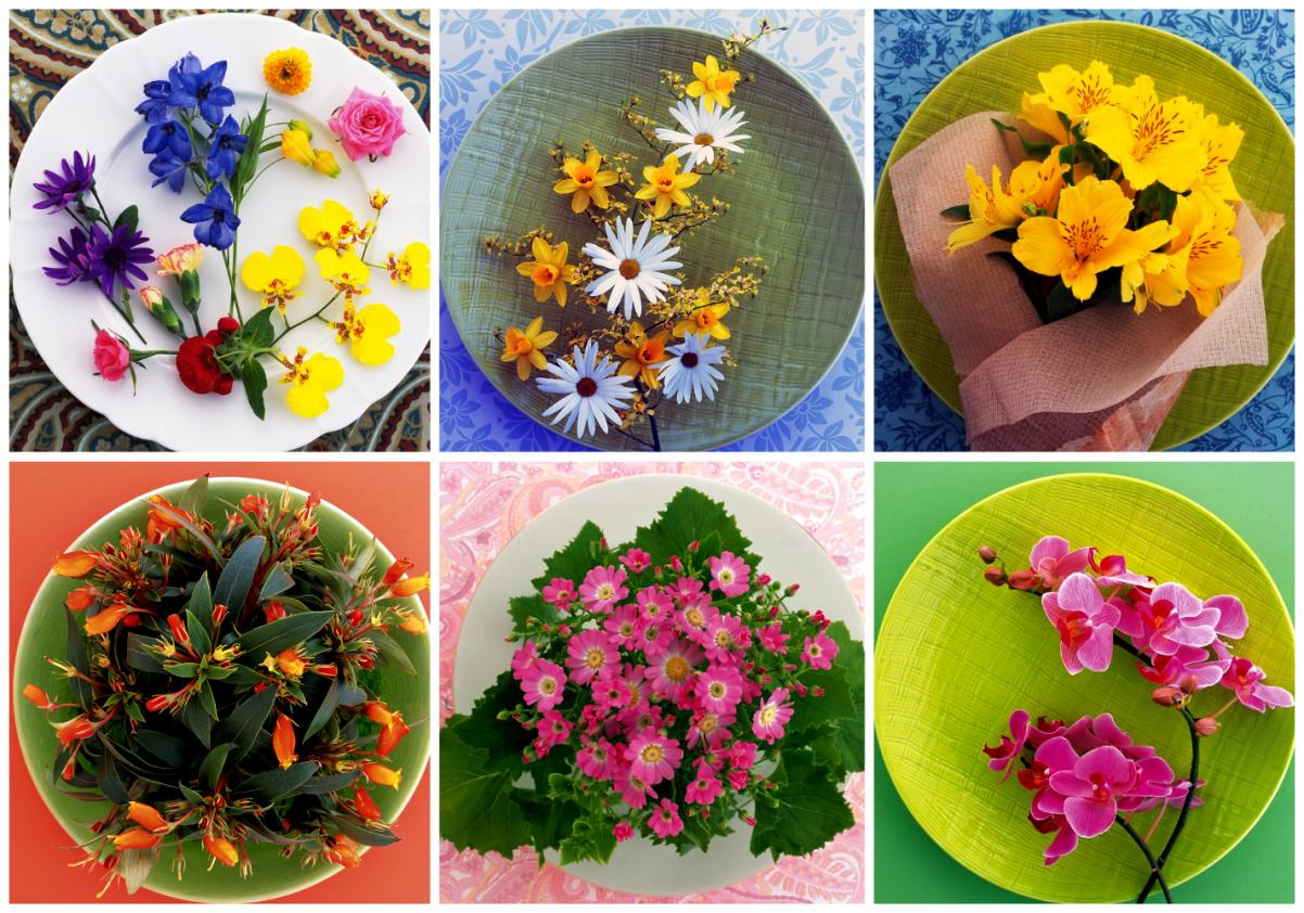 Коллаж из цветов