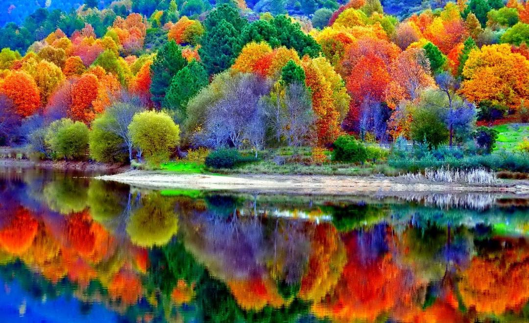 Красивая яркая картинка осени