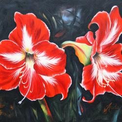 Пазл онлайн: Цветение большого Красного Амариллиса