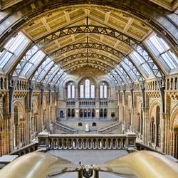 Пазл онлайн: Музей естественной истории, Лондон, Великобритания