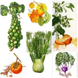 Пазл онлайн: Фруктово-овощная фантазия