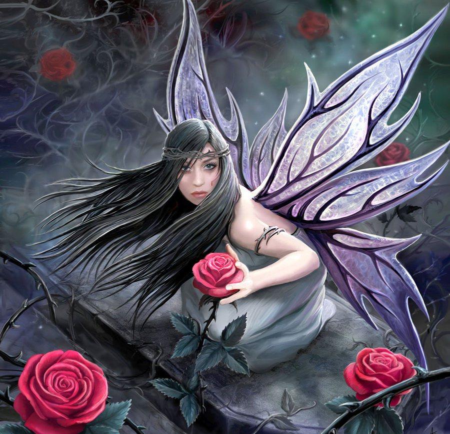 картинки ангел роза мистика прогуливался собаковладельцами, играл