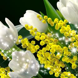 Пазл онлайн: Мимозы и тюльпаны