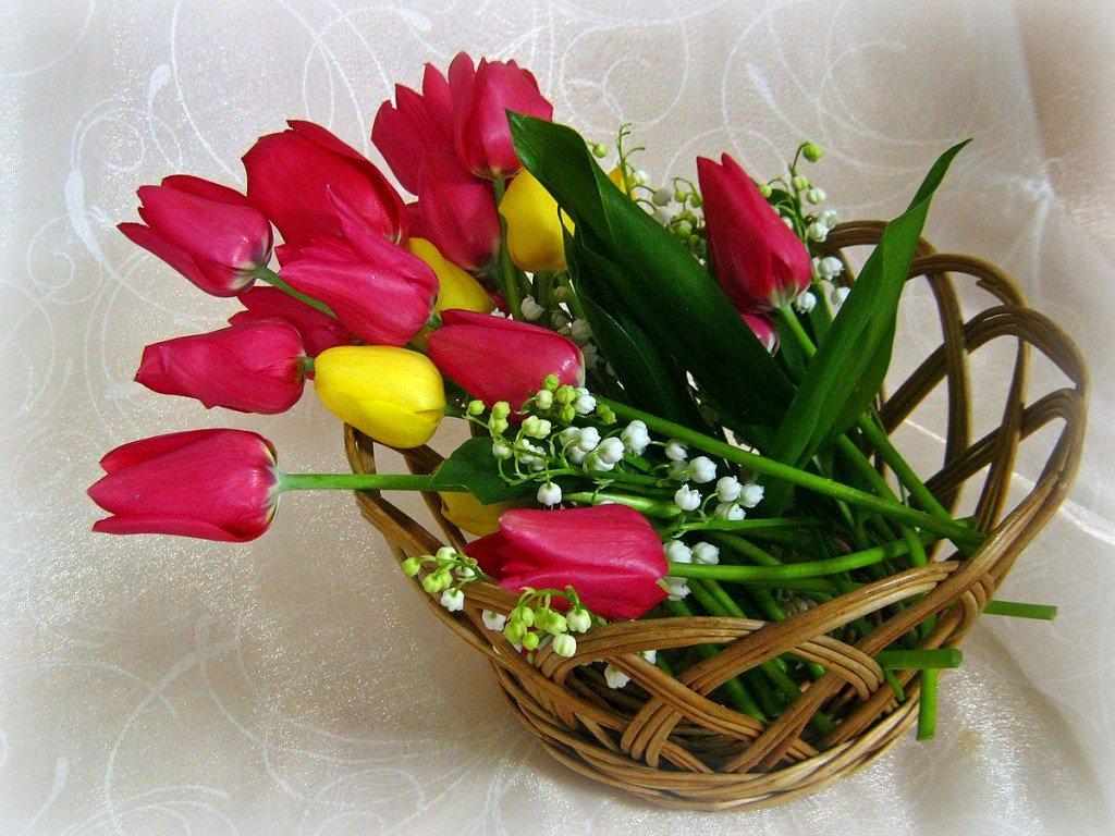 можете картинки весенний букет для хорошего человека любят осень