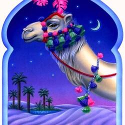 Пазл онлайн: Верблюд красавец