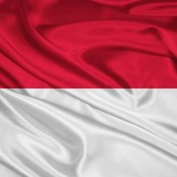 Пазл онлайн: Флаг Индонезии