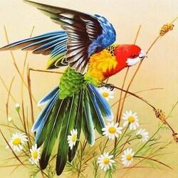 Пазл онлайн: Попугай и ромашки