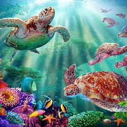 Пазл онлайн: Путешествие черепахи