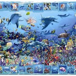 Пазл онлайн: Царство дельфинов