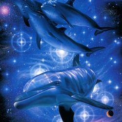 Пазл онлайн: Звездные дельфины